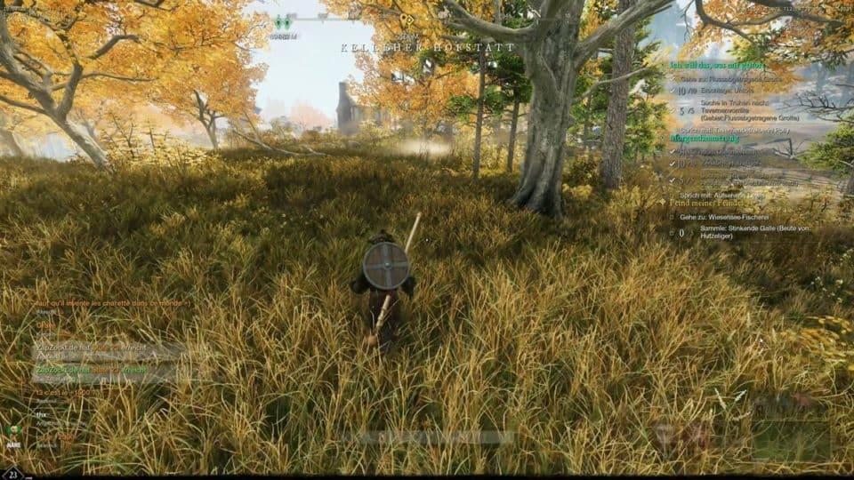 New World (p)Review Deutsch - PvE Spieler Test von Amazons MMORPG - amazing fog and lighting on the meadows - klasse nebel und beleuchtung auf der wiese