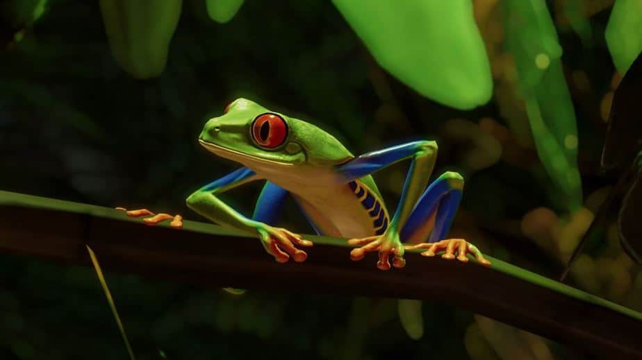 Planet Zoo South America DLC Review Testing the South American Pack - red eye tree frog